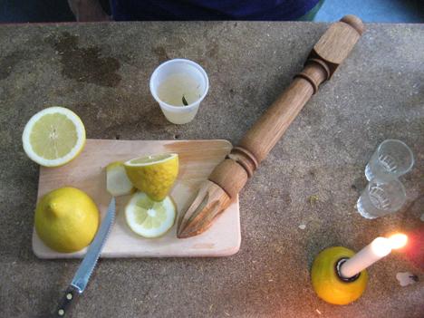 lemon toys.jpg