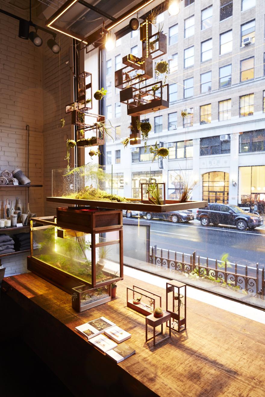 Dominc neitz hanging garden perspective lighting fixture plant in mini blocks floating landscapes of moss kokedamas suspended