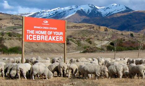 Case Study: Icebreaker Merino - Reinventing Wool as a