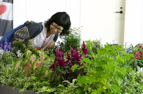 Sound Gardening, Transforming Plants into a Multi-Player Musical ...