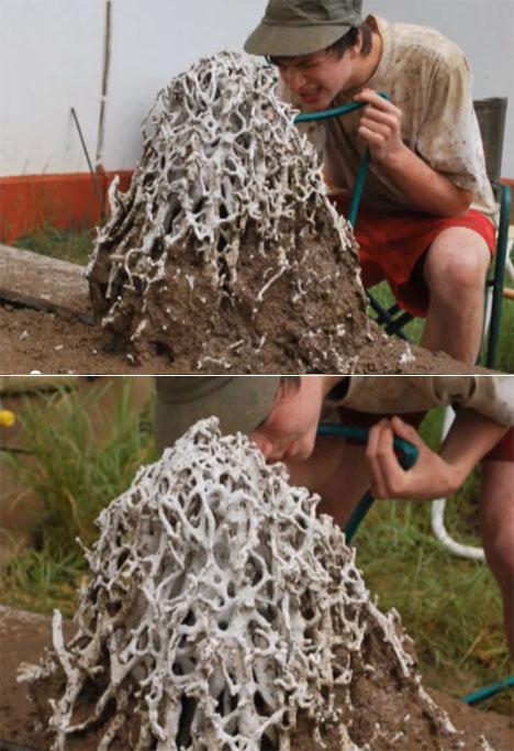 More Bug Nest Casting: Scott Turner's Termite Mounds - Core77