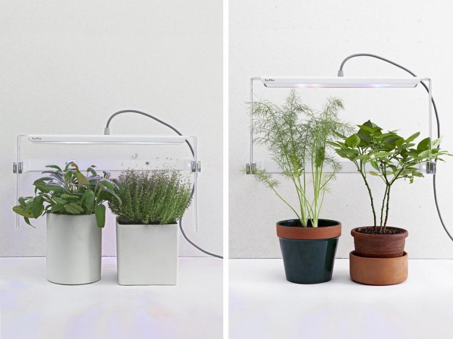 4 Minimal Grow Lights That Make Me Wish I Were Green - Core77