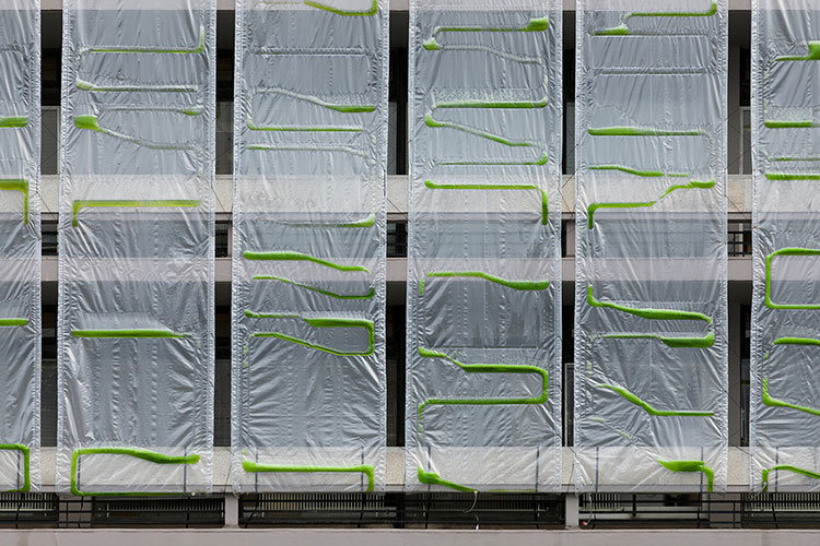 Could Algae-Based  Biocurtains  Make Our Cities Healthier?