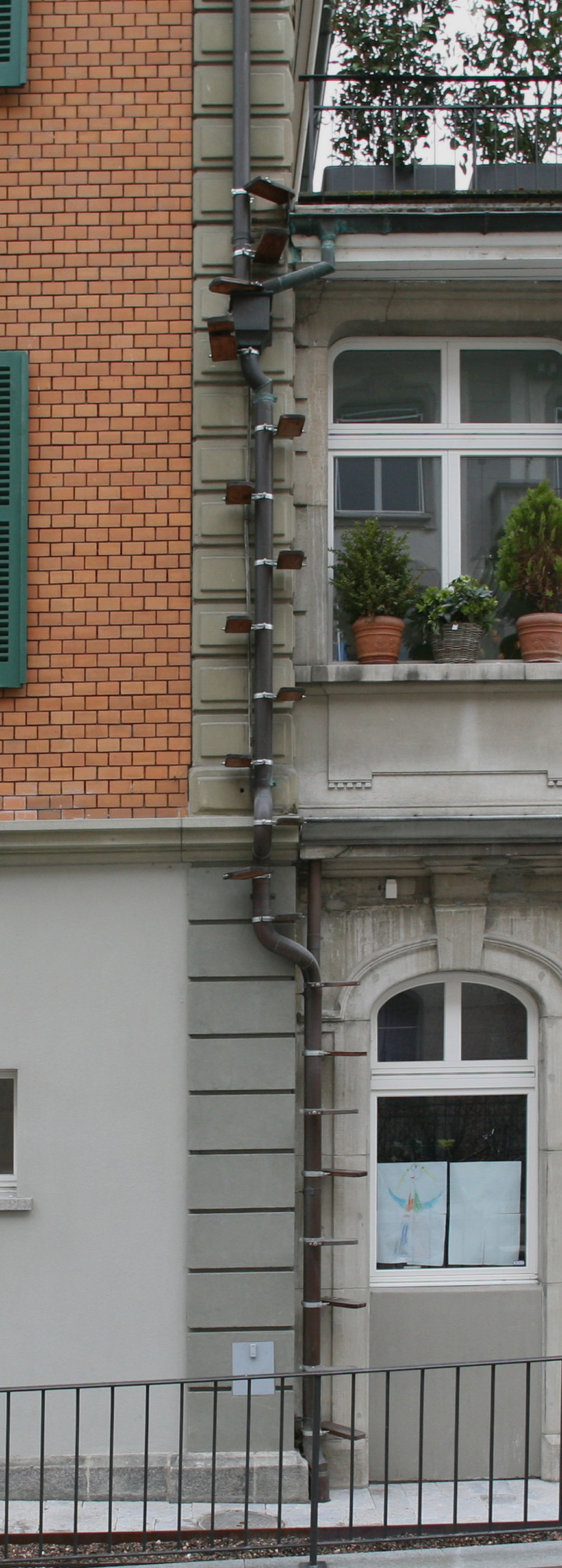 Picture of: Pet Doors For People Who Live On Upper Floors This City Allows You To Install Diy Cat Ladders Core77