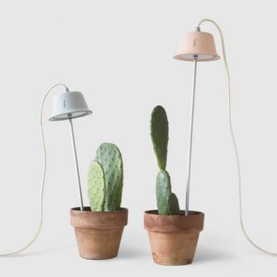 4 Minimal Grow Lights That Make Me Wish I Were Green