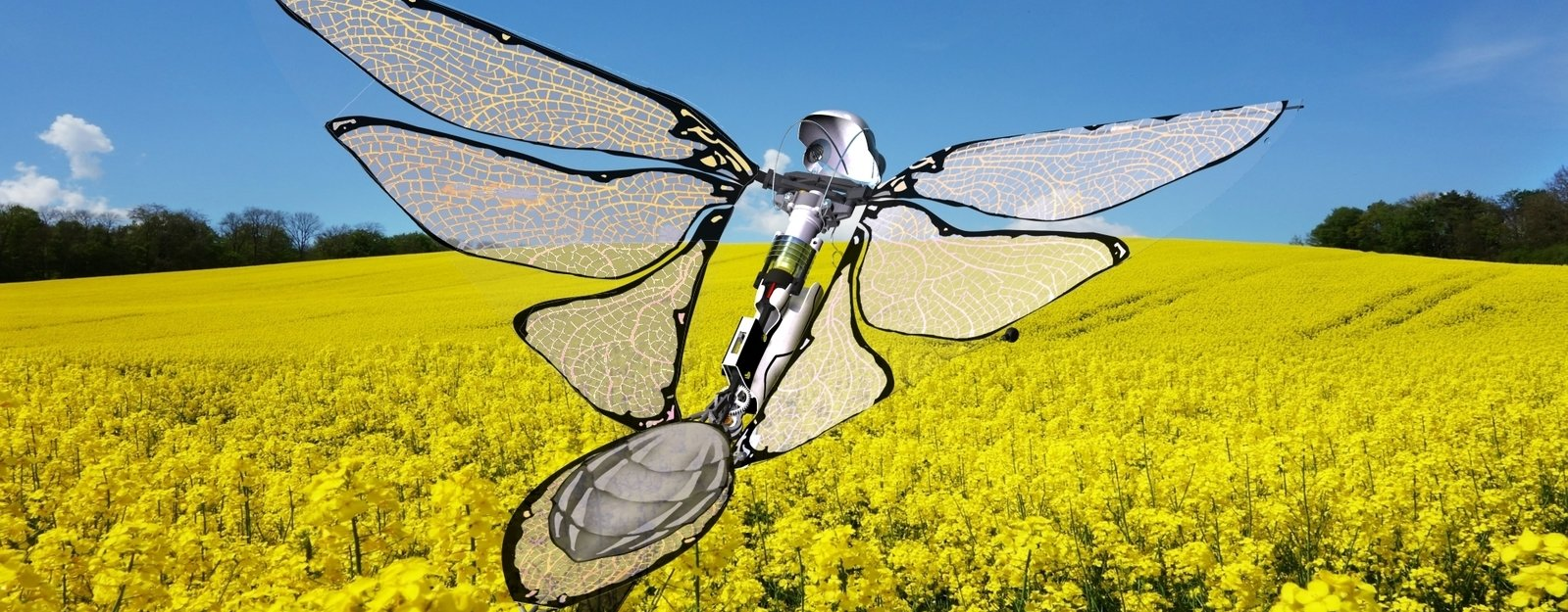 Why Edwin Van Ruymbeke Thinks the Drones of the Future Will Look Like Birds and Bugs