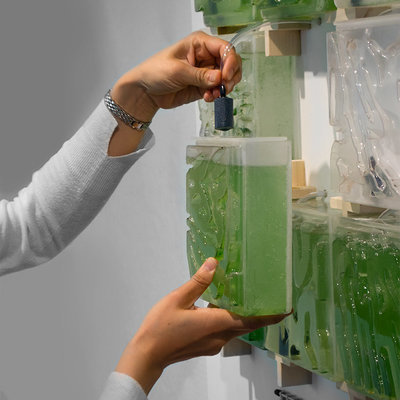 'The Coral' Introduces Humans to the Benefits of Growing Micro-Algae at Home