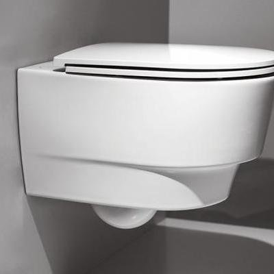 Is This Toilet the Future of Wastewater Management?