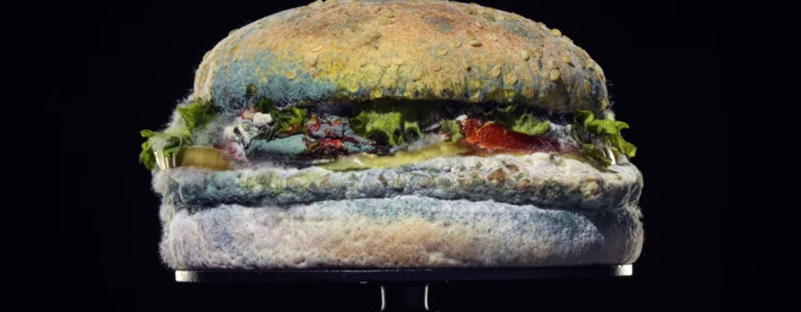 burger king papenburg