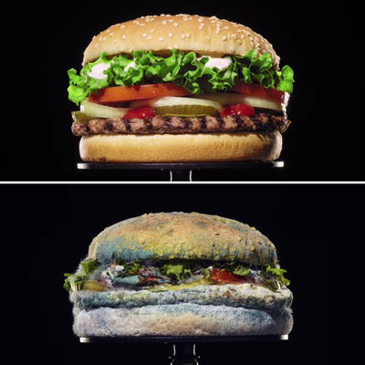 Bizarre Ad Strategy: Burger King Shows You Their Burgers Going Moldy, to Highlight Lack of Preservatives - Core77