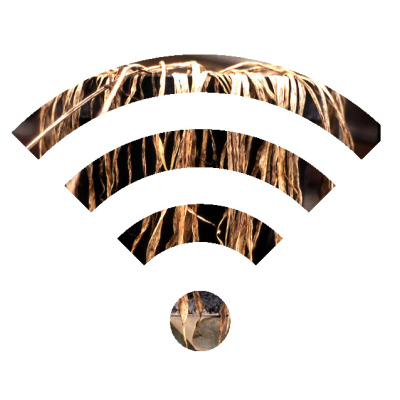 Unintended Consequences of Technology: Does Wi-Fi Kill Plants?