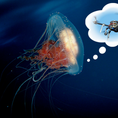 This Airborne Jellyfish Isn't Lost, It's a Drone