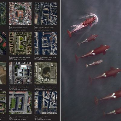 This Week in Aerial Imagery: Top-Down Typography and Killer Whalewatching