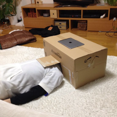 A DIY Immersive Viewing Experience from Japan
