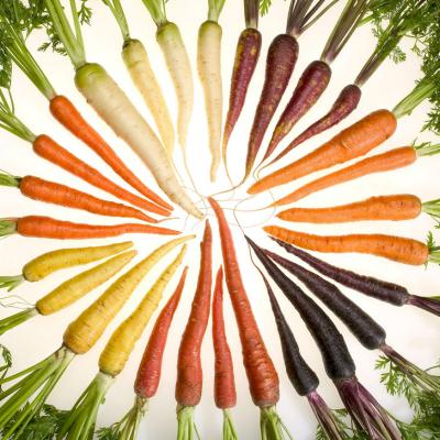 A Surprising Carbon Fiber Alternative: Nanofibers Made from Carrots